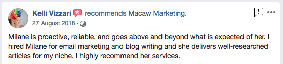 kelli vizzari testimonial the make it collective macaw marketing